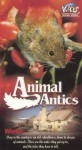Animal Antics Winter