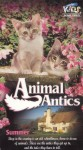 Animal Antics Summer