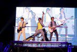 The Jonas Brothers Concert Experience 3D