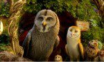 Legend of the Guardians: The Owls of Ga Hoole